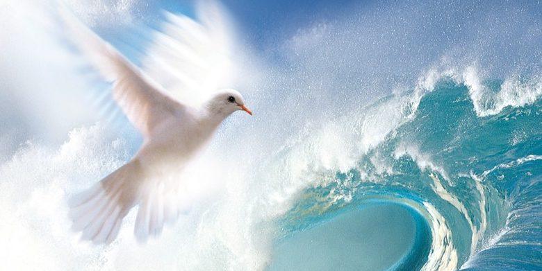 Healing-Rooms-Dove-Logo-e1529786718451